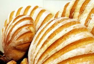 Karppaajat eivät syö vaaleaa leipää (kuva: MorgueFile)